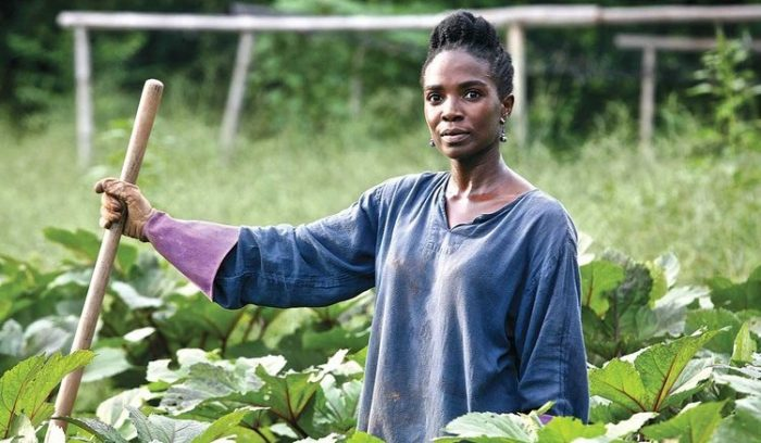 8 Reasons Why Ugandan Youth Should Engage In Agriculture
